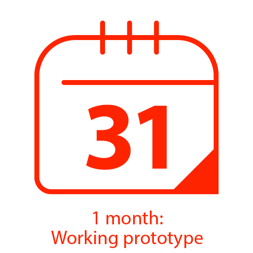 1 month: Working prototype