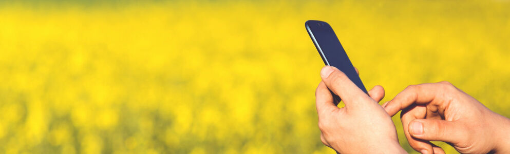 Van Iperen Helps Growers Grow With Innovative Customer Engagement and Transportation Apps