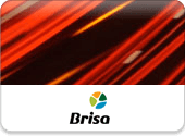 Custom Toll Management System to Consolidate all Billing Information - Brisa