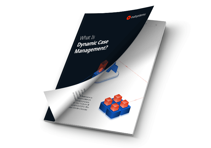 The Beginner's Guide to Dynamic Case Management